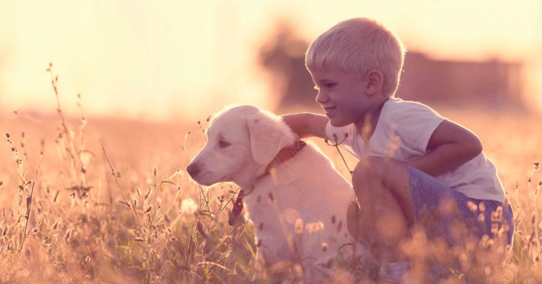 讓父母舒壓的戲劇療遇:釋放悲傷,擁抱你的內在小孩