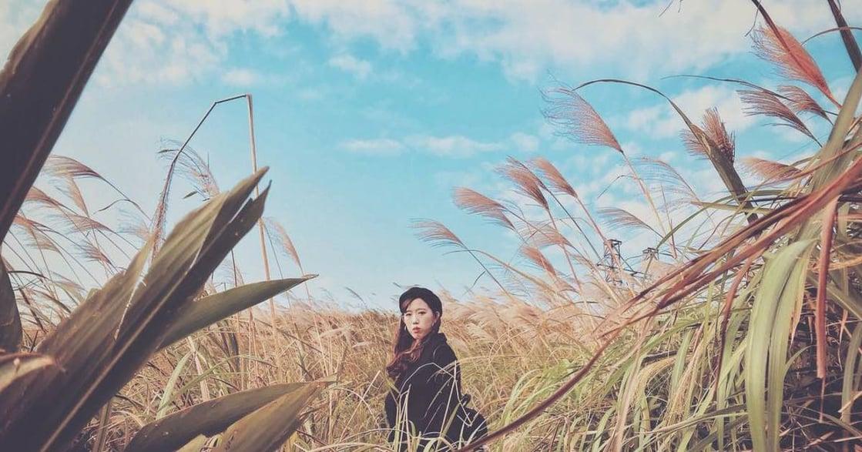 新北芒草美拍攻略:如何拍出充滿仙氣的照片?
