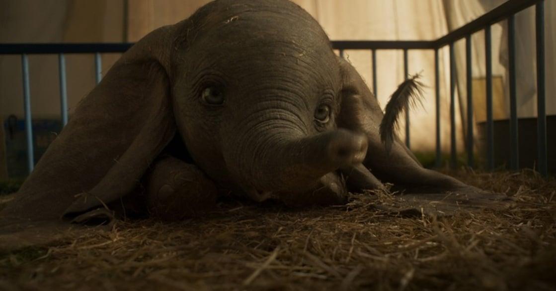 提姆波頓重拍真人版《小飛象》,奇幻的視覺旅程!