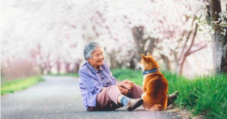 攝影師孫子拍下祖母與柴犬暖心互動:「不想再後悔」