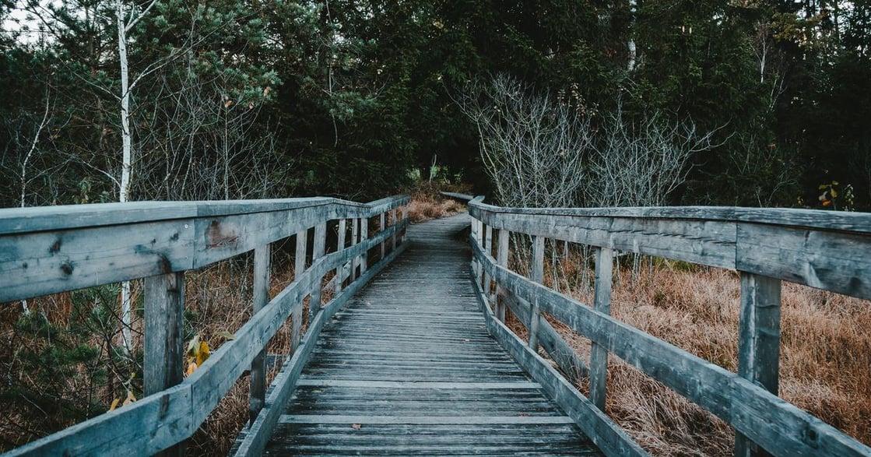 王聰威讀《克雷的橋》:男性故事底下,女性才是真正主角