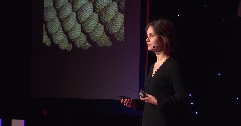 讓你擺脫焦慮的 TED Talk 演說:親愛的,你最需要的,是原諒自己