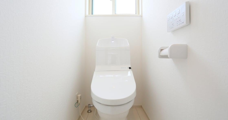 辦公室廁所:所有不被現實接納的,在那裡可以安坐