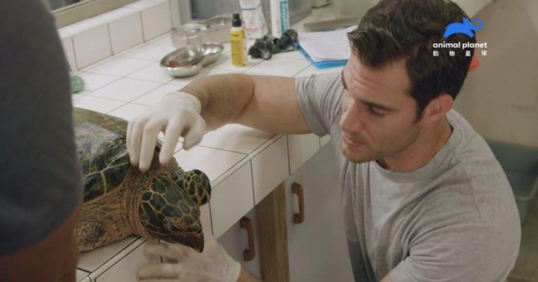 世界海龜日:還給地球,一個更清澈的未來