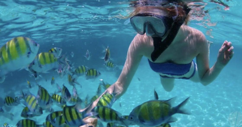 SUP、浮潛、水上飛板!盤點十大戲水場所
