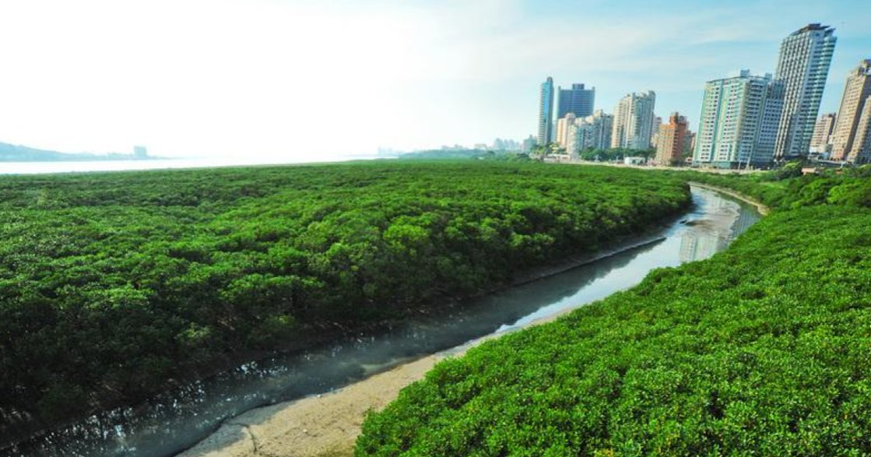 台北市沒天然綠地?在地人推薦的七大戶外景點公開!