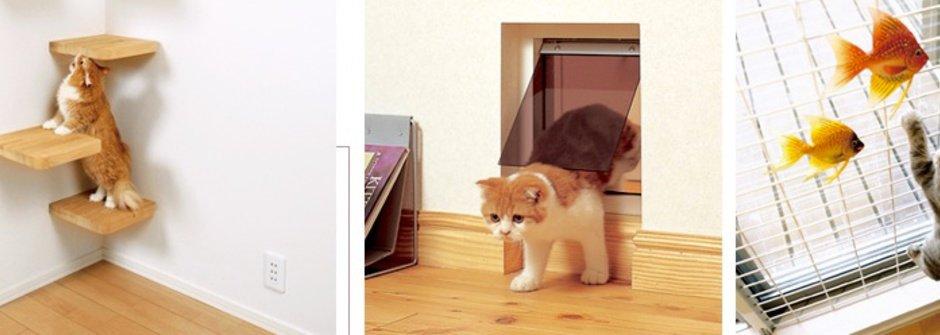 愛貓人士心目中的終極貓屋
