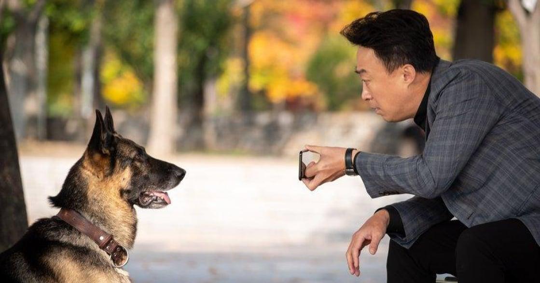 劉仁娜、申河均為動物獻聲!《明明會說話》:知動物心的警探的爆笑偵查