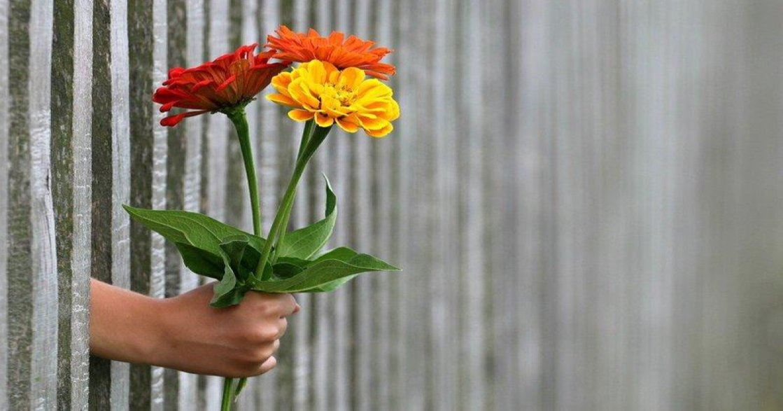 「我們給不出自己沒有的東西」在愛人之前,先好好地愛你自己