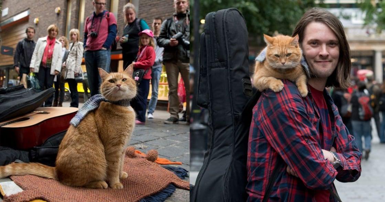 「我們在生命最低潮時,成為彼此的命運」街貓 Bob 離世,主人伯恩不捨道別
