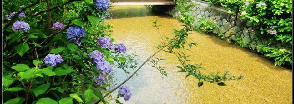 不容錯過的美好 京都衹園花見小路