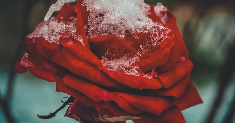伴侶關係診斷書:40 個關鍵分手因素,檢測感情是否到了臨界點?