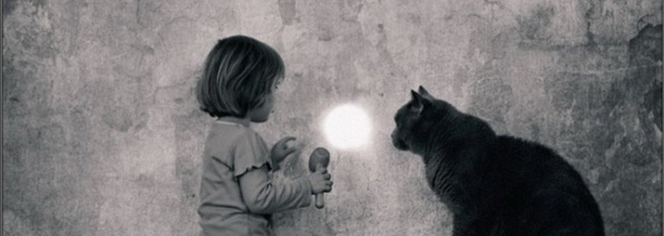 女孩與貓,療癒人心的天真攝影