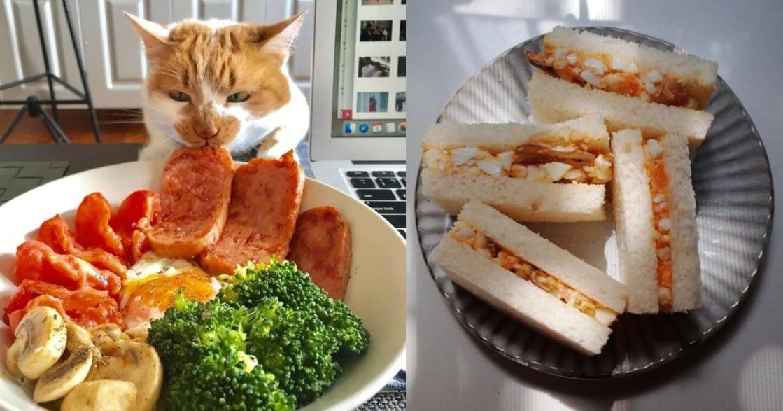 上海觀察日記 疫情在家還能做些什麼?一起做飯,是自我療癒儀式