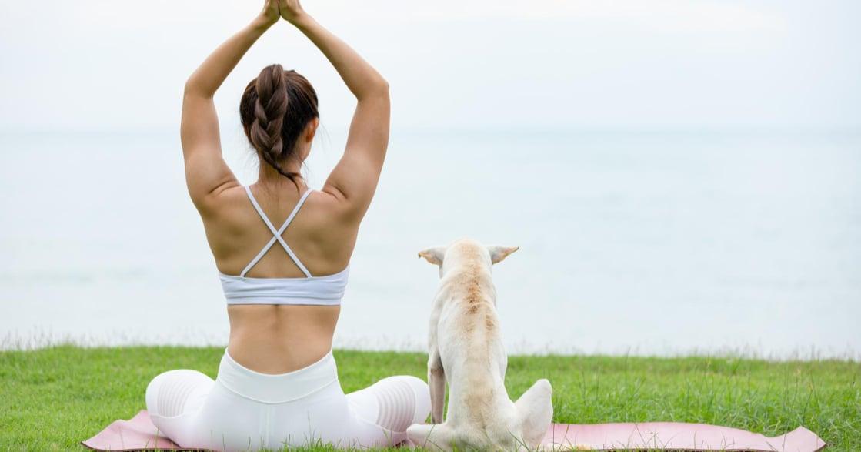 運動完的全身伸展動作 10 式:伸展時,你應該感覺到肌肉的張力,但不是「痛」!