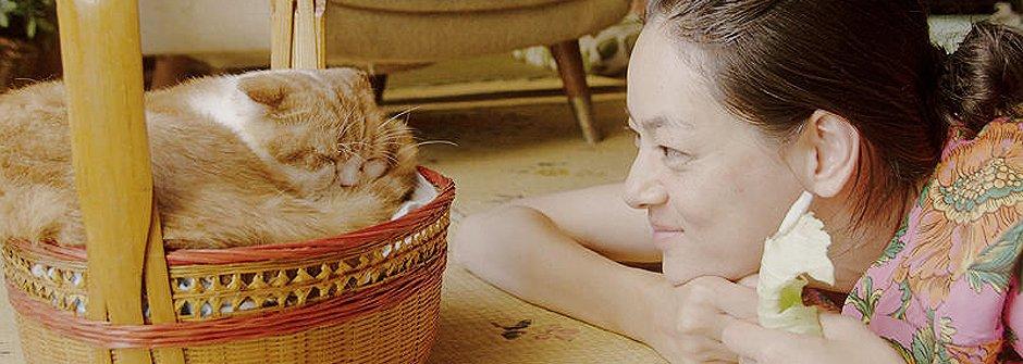 療癒系貓咪物語電影《吉貓出租》