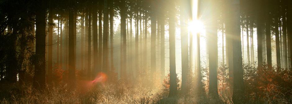 改變人生的一分鐘:培養預見未來的冥想力