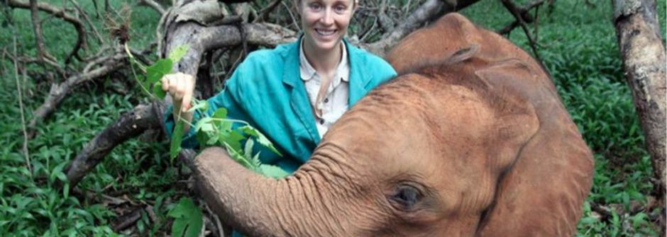 為大象遠走他鄉,在尚比亞為動物奮鬥的英國女孩:Rachael Murton