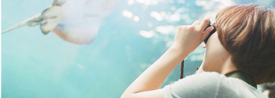 壞心情掰掰!最紓壓的日本療癒攝影集