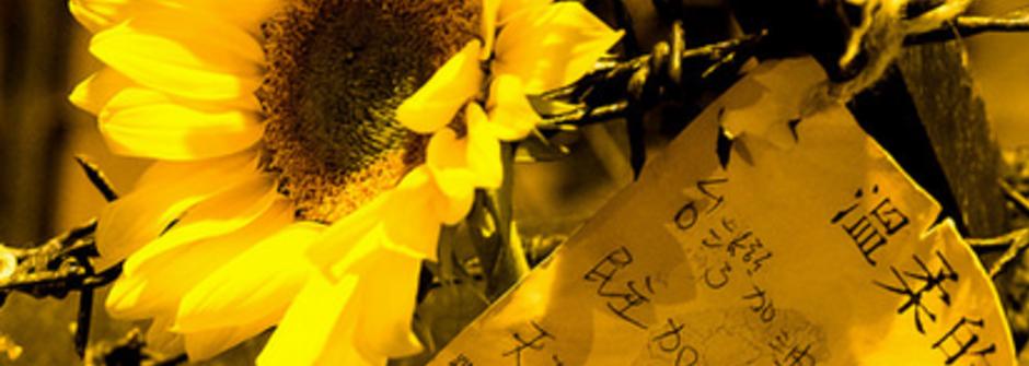 2014,五個讓你發現台灣人比想像中堅強的時刻
