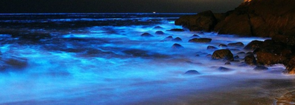 海上的孤獨島嶼,馬祖讓人心醉的藍眼淚
