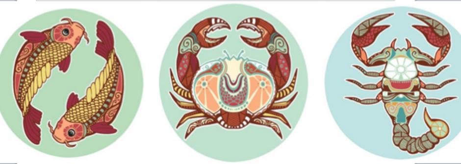 【蘇珊米勒星座專欄】雙魚、巨蟹、天蠍:水象星座的8月運勢