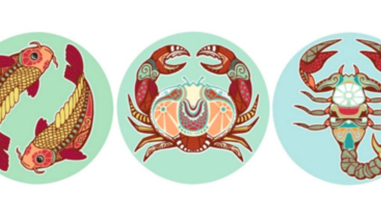 【蘇珊米勒星座專欄】雙魚、巨蟹、天蠍:水象星座的十二月運勢