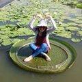 Hui-Yu Lee