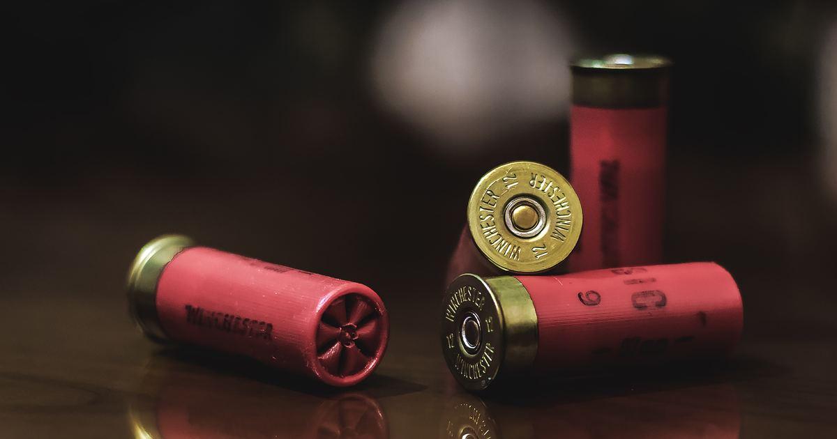 一年四萬人死於槍枝:為什麼美國槍枝暴力愈演愈烈?
