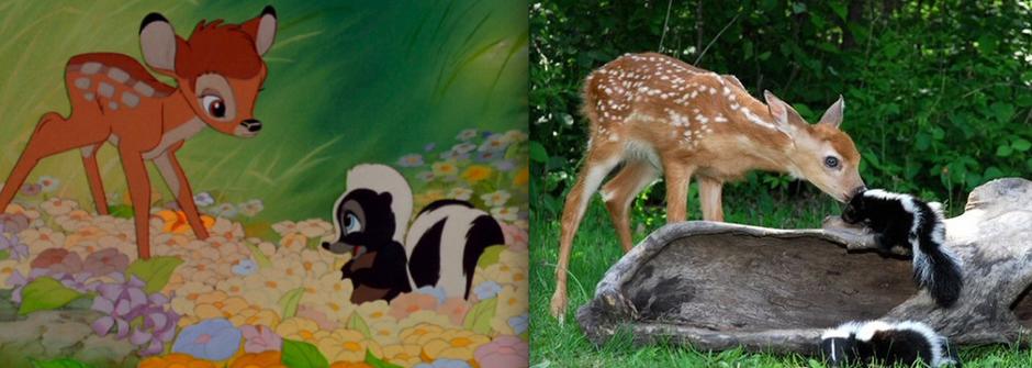童話就在你身邊!七彩迪士尼人物大集合