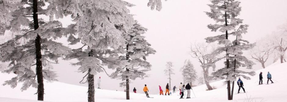 小孩跌倒爸媽卻在旁邊笑哈哈?「不怕失敗」的法式滑雪教育