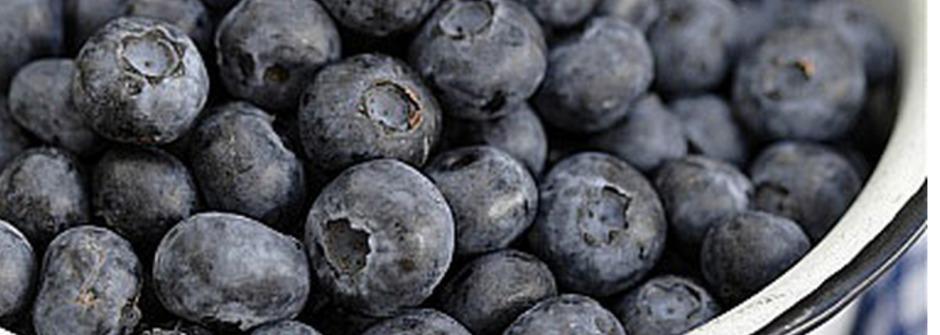 擊垮小肥肚!5大營養食物讓你越吃越瘦
