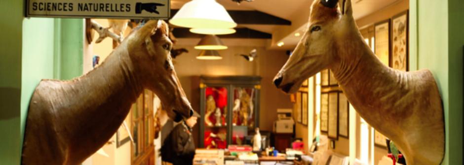 《午夜巴黎》秘密場景!你不想錯過的倫敦與巴黎小店