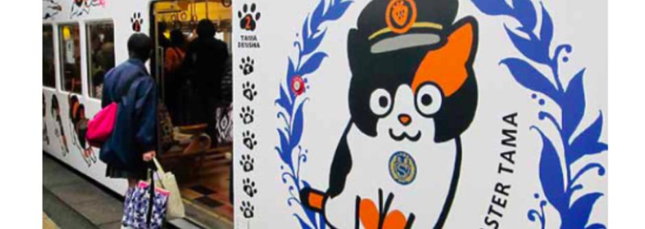 這裏歸貓管!鐵道迷和貓奴該筆記的日本和歌山電車