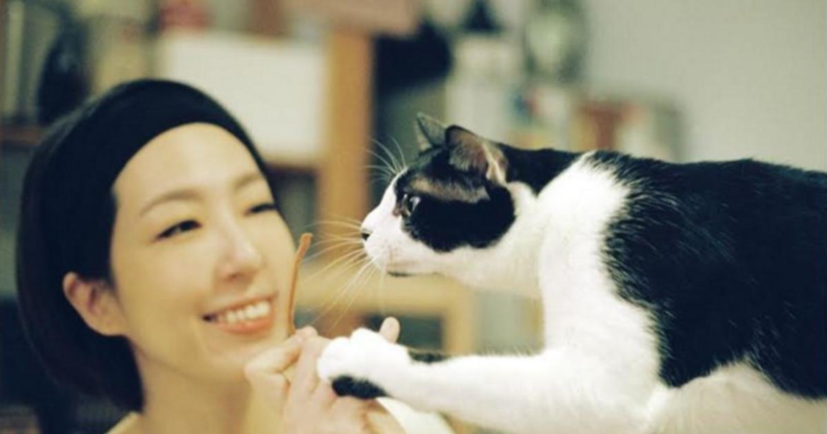 愛貓的時候特別溫柔!路嘉欣:人該像貓一樣,活得理直氣壯