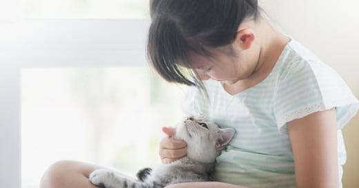 動物溝通師:毛孩,是唯一無條件只愛你的家人