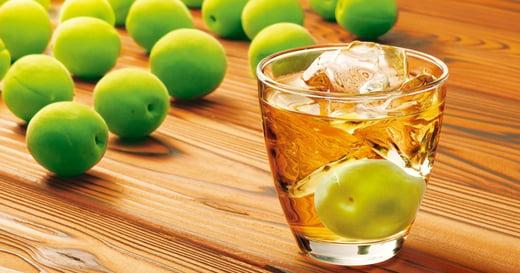 【一個人的派對】夏天飲梅酒之妙,是提醒生之美好