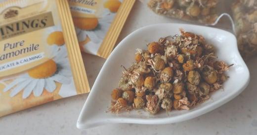 自宅的四季奶茶時光:洋甘菊蜂蜜拿鐵