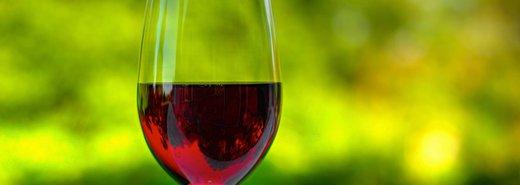 四步驟!女人學品酒,比男人容易