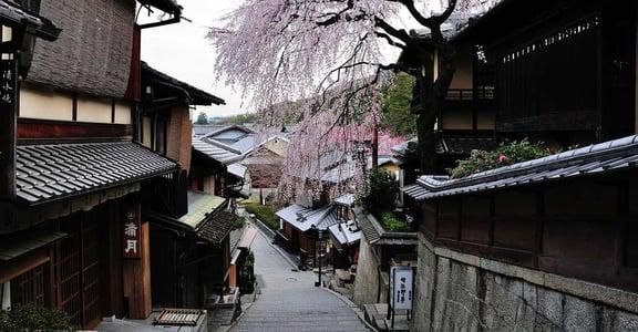 京都不可一世的優雅與驕傲:挑糞的鄉下人,造就了文化沃土