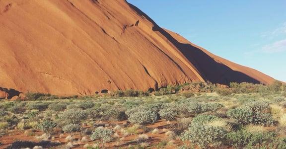 三十歲後的職場駱駝世代:上面頂著太陽,下面踩著熱沙
