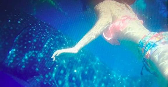 100天生活冒險|水肺潛水:愛讓人挑戰自己,練習勇敢
