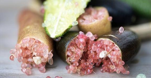 不施肥、不用殺蟲劑,澳洲原住民天然食物「Bush Food」成風潮