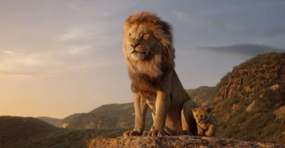 《獅子王》五句經典勇氣語錄:若壞事注定發生,我們何必過度擔心?