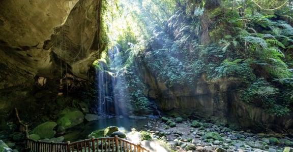 無限樹海、抹茶山、天使之梯!日本攝影師愛上台灣的原因