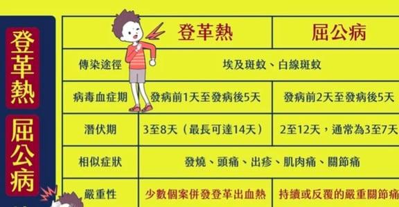 台灣第一次出現「屈公病」:與登革熱有什麼不同?要如何預防?