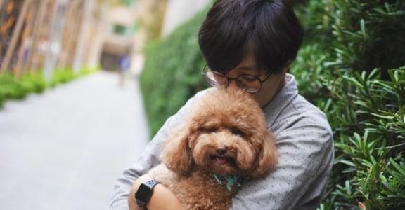 專訪獸醫師陳凌:生命很脆弱,7 歲已經老了,有時不等你牠就走了