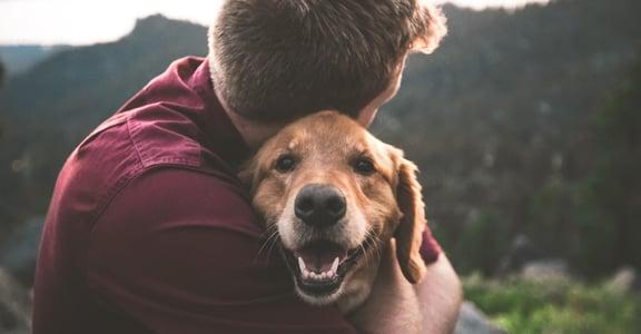 毛孩教我的事|牠讓我相信動物也能理解愛