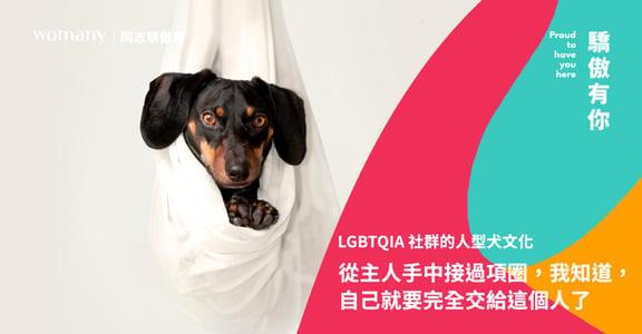 LGBTQIA 社群的人型犬文化:當從主人手中接過項圈,我知道,自己要完全交給這個人了
