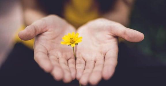 「就算你幫不了別人,也不必內疚」關係心理學:我說不,沒有對不起誰